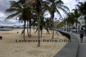 Strand und Promenade in der Verwaltungshauptstadt von Lanzarote Arrecife. Der Nachteil an dem Strand, da fahren manchmal Autos auf der Hauptstraße an der Strandpromenade vorbei. Ansonsten kann man da nichts nachteiliges sagen, wenn man sich die Palmen an dem Strand von Arrecife betrachtet.