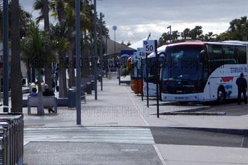 Reisebusse die bei den gebuchten Pauschalreisen am Flughafen Teneriffa-Süd auf den Kanarischen Inseln für die Weiterreise schon bereit stehen. Auf dem nächsten Foto vom Teneriffa Urlaub sehen Sie wie die Busse der öffentlichen Verkehrsmittel aussehen die man bei dem individuellen Urlaub nimmt um Reisekosten zu sparen.