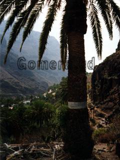La Gomera, Ausblick in das Tal beim Wandern.
