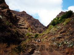 La Gomera Trekking vom Valle Gran Rey durch die Schluchten aus längst vergangenen Tagen zum Hochplateau, wo man einen der schönsten Aussichten der Kanarischen Inseln genießen kann. Zum Wandern ideal.
