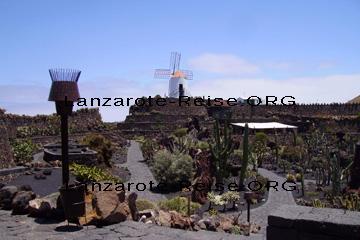 Wenn Sie diese Windmühle auf Lanzarote sehen, dann wissen Sie das Sie sich am Kakteengarten Jardin de Cactus befinden. Hinter der Windmühle liegt der Parkplatz und im Vordergrund erkennt man den sehr schön angelegten Garten mit den Kakteen.