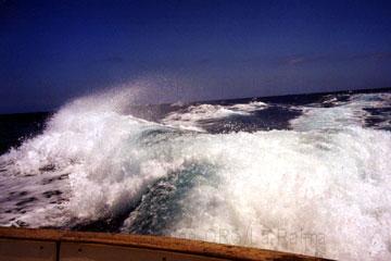 Mit High-speed auf einer Motoryacht beim Kanaren Urlaub, da sieht man richtig auf dem Bild wie die Motoren das Meerwasser aufwirbelt wenn man da mal richtig Gas gibt.