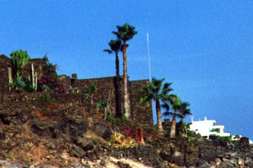 Ferienwohnung mit prächtigen hohen Palmen und Kakteen in der Nähe von dem Strand wo der Spanische König auf der Kanarischen Insel Lanzarote sein Anwesen hat und ein strahlend blauer Himmel.