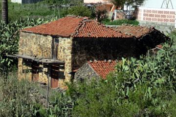 Ein kleines Ferienhaus auf der Insel La Palma idyllisch zwischen Palmen und Kakteen an einem Hang in einem Bergdorf das sanierungsbedürftig ist wie man auf dem Bild leicht erkennen kann.