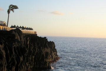 La Palma, hier auf dem Bild erkennt man das gut an den Blättern der Palma auf der Klippe wie da der Wind am Anfang März 2014 war, wie sich die Palmblätter biegen.