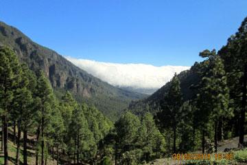 La Palma Wolke vom Passatwind getrieben.