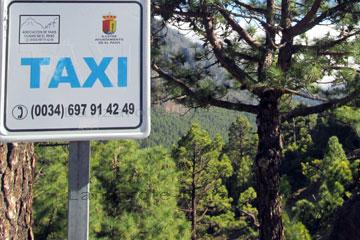 Taxi Rufnummer 0034 697 91 42 49 in der Nähe von El Paso am Straßenrand auf der Kanarischen Insel La Palma.