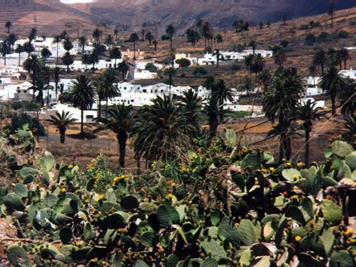 Ansicht von Haria beim Ausflug mit dem Mietwagen auf der kanarischen Insel Lanzarote im Großformat.