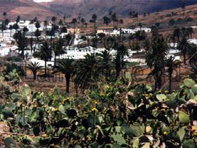 Ansicht von Haria, dem Tal der tausend Palmen im Norden der kanarischen Insel Lanzarote.