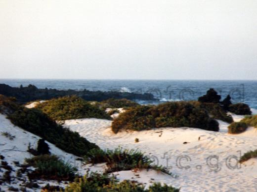 Orzola Sandd 252 Nen Nord Lanzarote Spanien Lanzarote