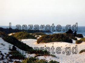Orzola Lanzarote, Sanddünen.