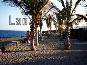 Strand und Palmen am Playa Bastian an der Costa Teguise. Hinten verläuft die schöne Strandpromenade.
